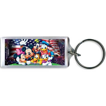 Picture of Disney Party in the Usa Mickey Minnie Pluto Goofy Donald Daisy Lucite Keychain, Florida Namedrop