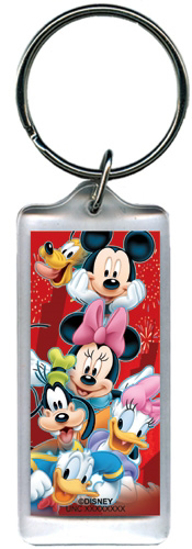 Picture of Disney Heroes Mickey Minnie Pluto Goofy Donald Daisy Lucite Keychain