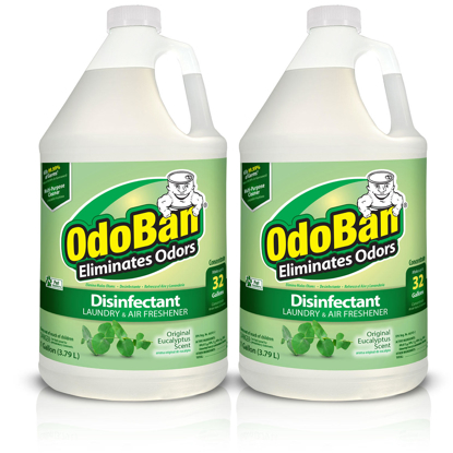OdoBan Odor Eliminator and Disinfectant Concentrate Eucalyptus Scent 1 pak