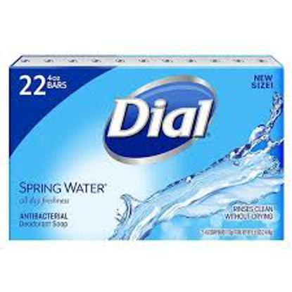 Dial Antibacterial Deodorant Soap, Spring Water 4.0 oz. 22 ct.