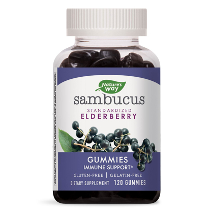 Picture of Natures Way Sambucus Elderberry Herbal Supplement Gummies Gluten Free 120 ct