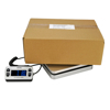 Royal DG110 Postal Scale 110 lb Capacity